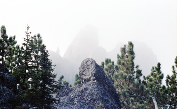 The Needles in Fog
